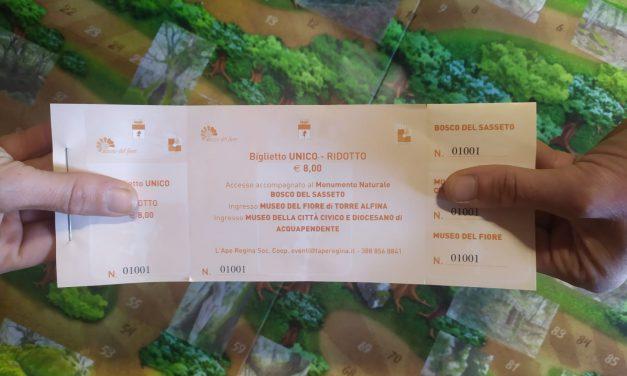 Biglietto unico – cos'è