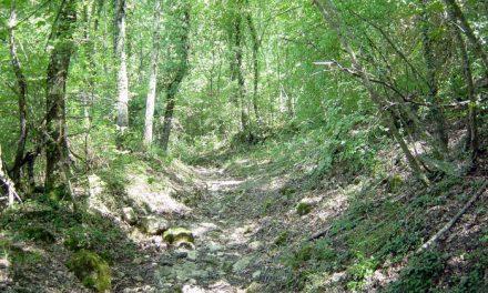 La Scialimata: terre in movimento