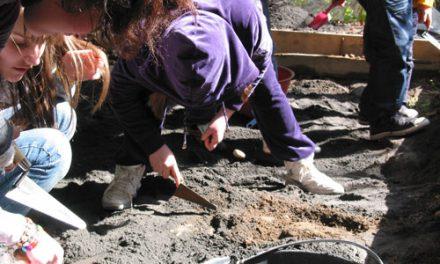 Il piccolo archeologo